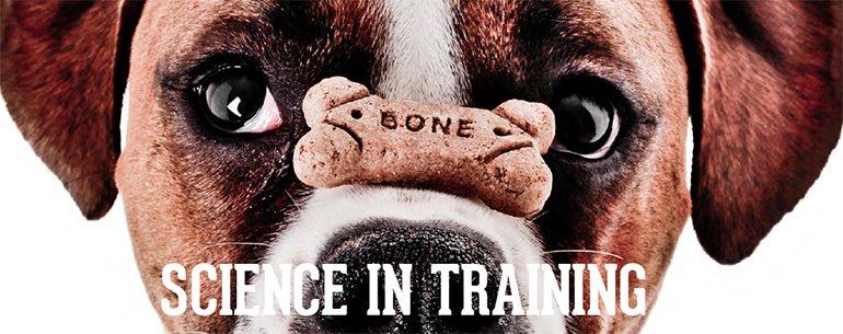 science et éducation canine