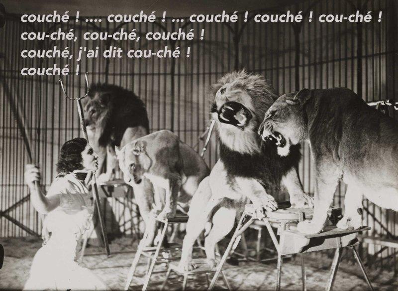 syndrome du dresseur de lion chez un éducateur canin