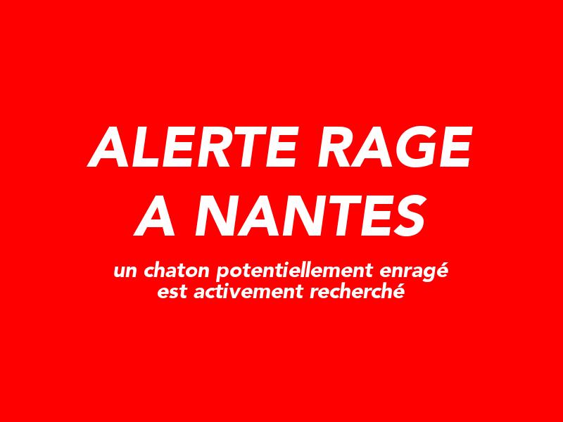 alerte rage Nantes
